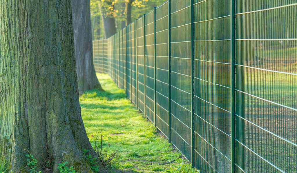 security-fencing-gallery_0003_AdobeStock_213920187